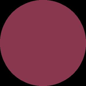 paris-gel-nail-polish-076-Lady-Cersi