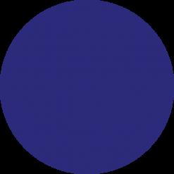 paris-nail-polish-132-American-Blue