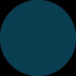 paris-matching-3in1-084-Turtleshell